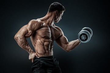 The best post workout supplements
